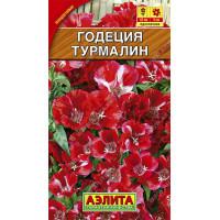 Годеция Турмалин  | Семена
